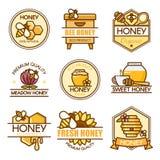 Vektoruppsättning av kulöra honungetiketter, biemblem och designbeståndsdelar Bikupalogomall Plan begreppsstil för översikt Arkivbild