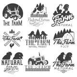 Vektoruppsättning av lantgårdetiketter Monokromma logoer, emblem, baner och emblem i tappning utformar isolerad knapphandillustra Arkivfoton