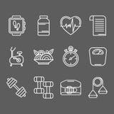 Vektoruppsättning av linjen symboler för personligt instruktörprogram stock illustrationer