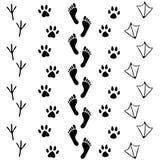 Vektoruppsättning av människan och djuret, fågelfotspårsymbol Samlingen av kalt mänskligt foots, katten, hunden, fågeln, höna, få stock illustrationer