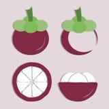 Vektoruppsättning av mangosteensymbolen Fotografering för Bildbyråer