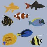Vektoruppsättning av marin- djur bubblor kopierar vektorn för text för avstånd för seaweeds för havet för fiskillustrationlivstid Arkivbild