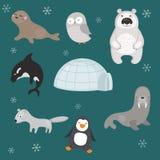Vektoruppsättning av olika arktiska djur Royaltyfri Fotografi