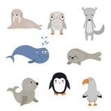 Vektoruppsättning av olika arktiska djur Arkivbilder