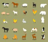 Vektoruppsättning av olika plana lantgårddjur Arkivbild