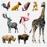 Vektoruppsättning av polygonal djur Royaltyfria Bilder