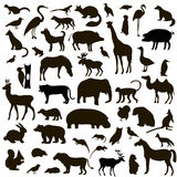 Vektoruppsättning av svarta djur- och fågelkonturer vektor illustrationer