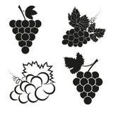 Vektoruppsättning av svarta symboler för abstrakta druvor Royaltyfria Foton