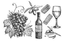 Vektoruppsättning av vinrankaprodukter illustrationen skissar in stil design tecknad elementhand bakgrund isolerad white vektor illustrationer
