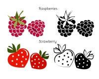 Vektoruppsättning för trädgårds- hallon och jordgubbar Arkivfoto
