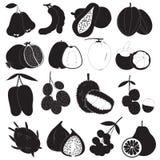 Vektoruppsättning för tropiska frukter royaltyfri illustrationer