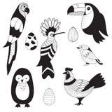 Vektoruppsättning med fåglar och ägg stock illustrationer