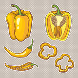 Vektoruppsättning med grönsaker: peppar som isoleras på vit Royaltyfria Bilder