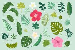 Vektoruppsättning med palmblad och blommor vektor illustrationer