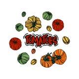 Vektoruppsättning med tomater Royaltyfri Foto