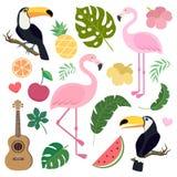Vektoruppsättning med tukan och flamingo Arkivbilder