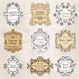 Vektoruppsättning: Tappning inramar, Calligraphic designbeståndsdelar Royaltyfri Fotografi