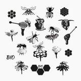 Vektoruppsättningen för honung skissar 4 Royaltyfri Bild