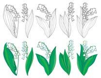 Vektoruppsättningen med översiktsliljekonvaljen eller Convallaria blommar och sidor i gräsplan och svart som isoleras på vit bakg Royaltyfria Bilder