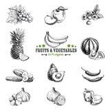 Vektoruppsättning av frukt och grönsaker Fotografering för Bildbyråer