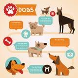 Vektoruppsättning av infographicsdesignbeståndsdelar - hundkapplöpning Arkivfoto