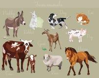 Vektoruppsättning av olika lantgårddjur Arkivfoton