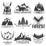 Vektoruppsättning av skogtemaemblem Tappning förser med märke, logoer, etiketter och klistermärkear med djuret, trädkonturer isol Arkivbild
