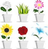 Vektorväxt i blomkruka royaltyfri illustrationer