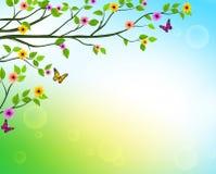 Vektorvårbakgrund av trädfilialer med växande sidor stock illustrationer