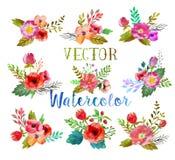 Vektorvattenfärgknapphål royaltyfri illustrationer