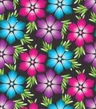 Vektorwallpaper av blommor Arkivfoto