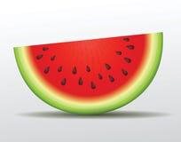 Vektorwassermelonenscheibe. Lokalisiert Stockfotos