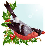 Vektorweihnachtsgrußkarte mit Bullfinch Lizenzfreies Stockfoto