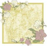 Vektorweinlesefeld mit Blumen Lizenzfreies Stockfoto