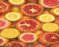 Vektorzeichnung der Pampelmuse, der Orange und des Granatapfels lizenzfreie abbildung