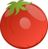 Vektorzeichnung der Tomate Lizenzfreie Stockfotografie