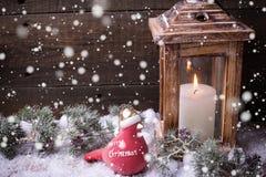 Vela ardiente en linterna, pájaro de la Navidad y árbol de la piel de las ramas Fotografía de archivo libre de regalías