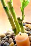 Vela ardiente y vástagos de bambú para la meditación Foto de archivo libre de regalías