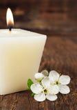 Vela aromática con la flor de cerezo Imagenes de archivo