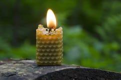 Vela de la cera de abejas Fotos de archivo libres de regalías