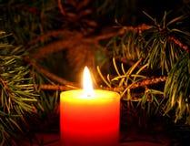 Vela de la Navidad con brunch del árbol del ` s del Año Nuevo en fondo oscuro Foto de archivo libre de regalías