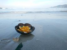Vela del aroma en la cáscara del coco que flota en la playa foto de archivo