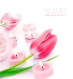 Vela del balneario con las flores rosadas del tulipán Imagenes de archivo