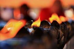 Vela do fogo no selvagem imagens de stock