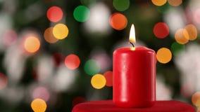 Vela do Natal que queima-se na frente da árvore do xmas video estoque