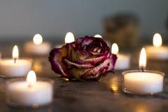 a vela e a chama com secado aumentaram O foco médio em aumentou fotos de stock