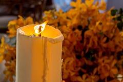 Vela e flor Imagem de Stock Royalty Free