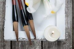 Vela, irisis y plumas chinas del cepillo de escritura Fotografía de archivo