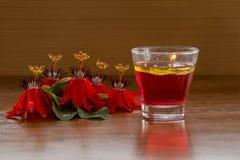Vela roja de la flor y del agua de la pasión Fotos de archivo libres de regalías