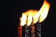 Velas animais da cópia com a chama que está sendo fundida imagens de stock
